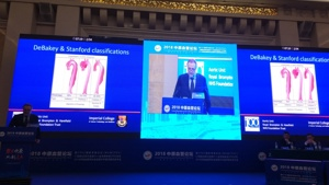 Jullien Gaer addressing the 2018 CPEC conference on endovascular surgery, Zhengzhou, Henan Province, China